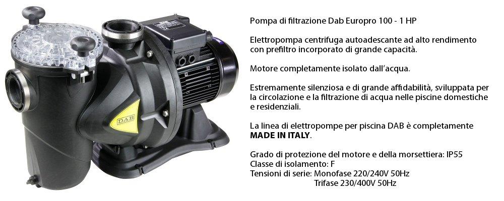 pompa di filtrazione Dab 1cv in dotazione con il kit accessori professional