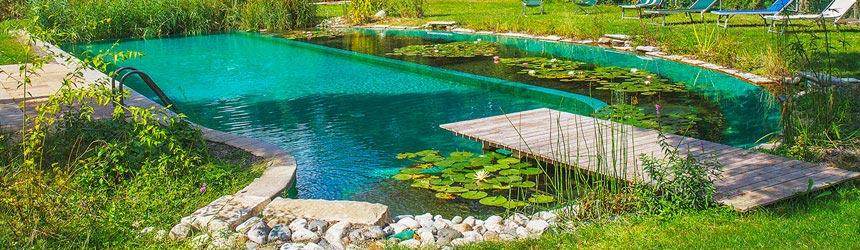 Costruisci il tuo laghetto o biopiscina con Zavattishop